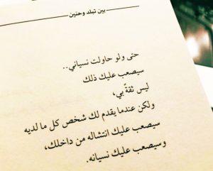 تحميل كتاب بين تبلد وحنين برابط مباشر pdf